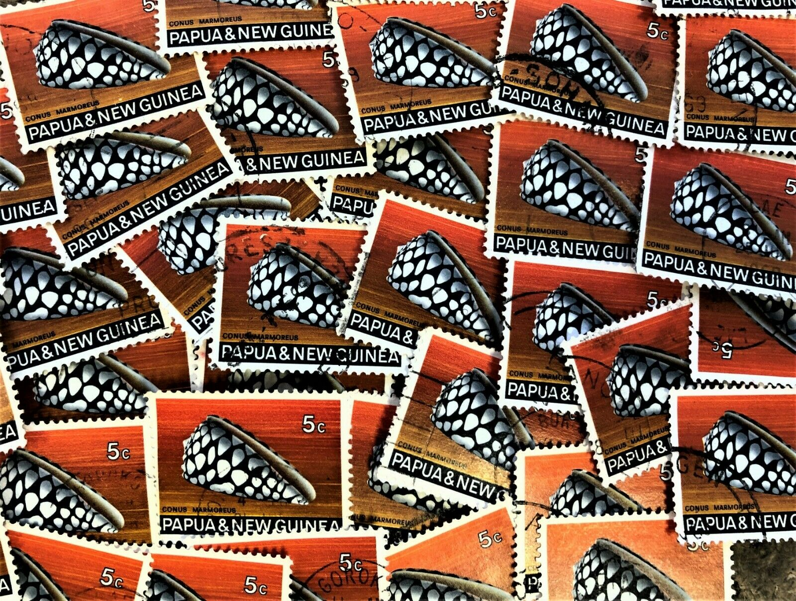 APPROX THIRTY THOUSAND PAPUA 5C PREDATORY CONUS SHELL STAMPS USED 1968 SG140
